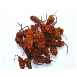 Naga Jolokia Ghost chili 15gr